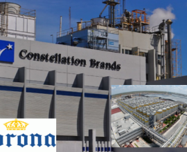 Corona Constellation Brands